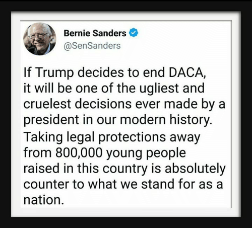 Bernie Sanders, History, and Trump: Bernie Sanders  @SenSanders  If Trump decides to end DACA,  it will be one of the ugliest and  cruelest decisions ever made by a  president in our modern history.  Taking legal protections away  from 800,000 young people  raised in this country is absolutely  counter to what we stand for as a  nation