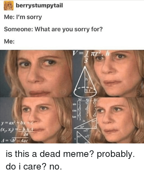 Meme, Memes, and Sorry: berrystumpytail  Me: I'm sorry  Someone: What are you sorry for?  Me  1  sin  cos  2a is this a dead meme? probably. do i care? no.