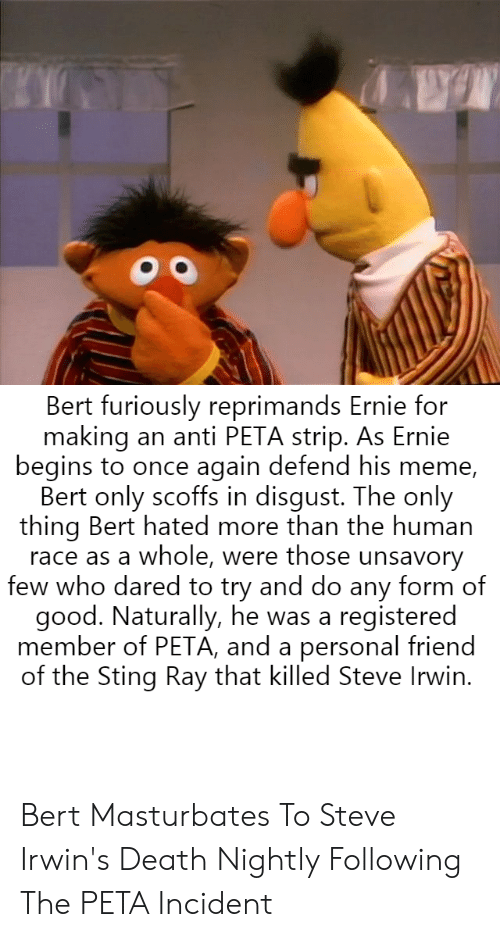 Anti Peta: Bert furiously reprimands Ernie for  making an anti PETA strip. As Ernie  begins to once again defend his meme,  Bert only scoffs in disgust. The only  thing Bert hated more than the human  race as a whole, were those unsavory  few who dared to try and do any form of  good. Naturally, he was a registered  member of PETA, and a personal friend  of the Sting Ray that killed Steve Irwin. Bert Masturbates To Steve Irwin's Death Nightly Following The PETA Incident