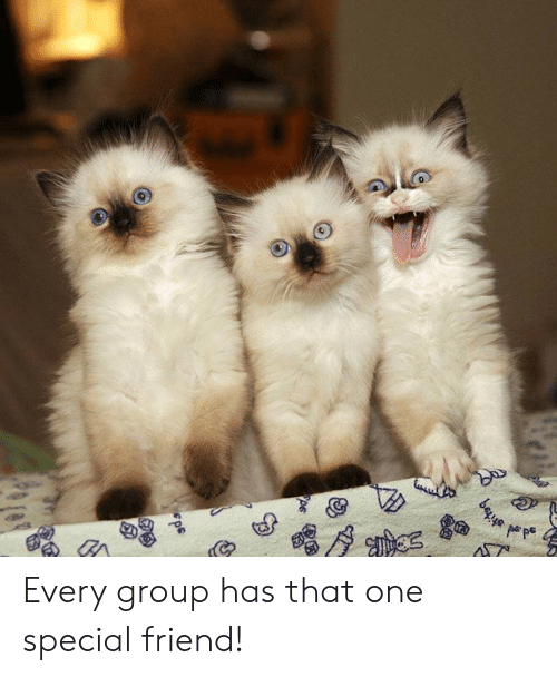 bes: bes Every group has that one special friend!