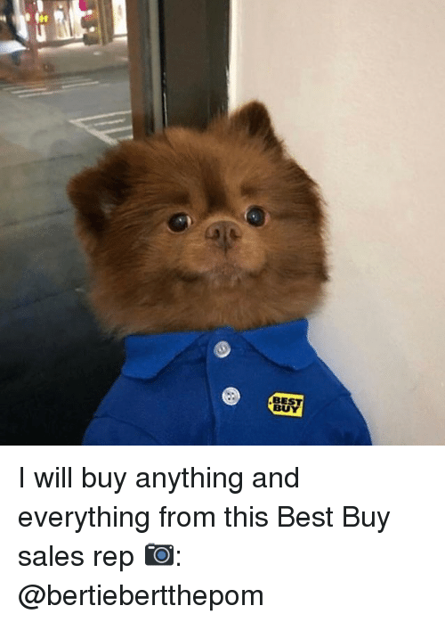 Best Buy, Memes, and Best: BEST  BU I will buy anything and everything from this Best Buy sales rep 📷: @bertiebertthepom