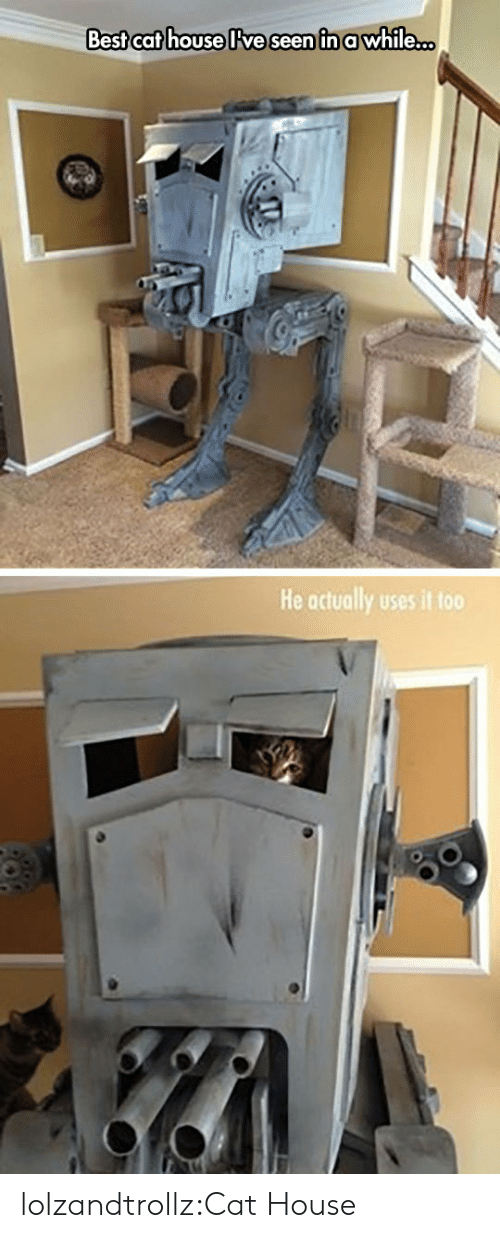 Best Cat: Best cat house lve seen in awhile...  He actually uses it too lolzandtrollz:Cat House