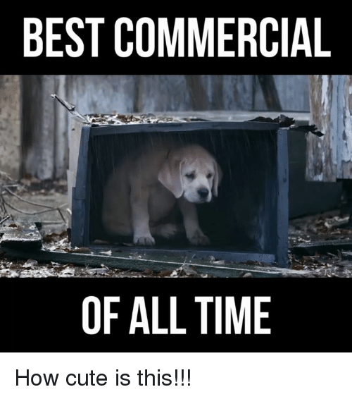Best Commercials: BEST COMMERCIAL  OF ALL TIME How cute is this!!!