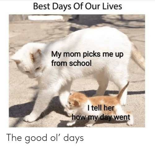 Good Ol: Best Days Of Our Lives  My mom picks me up  from school  I tell her  how my day went The good ol' days