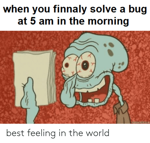 in the world: best feeling in the world