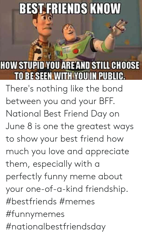 National Best Friend: BEST FRIENDS KNOW  HOW STUPID YOU ARE AND STILL CHOOSE  TO BE SEEN WITH YOUIN PUBLIC. There's nothing like the bond between you and your BFF. National Best Friend Day on June 8 is one the greatest ways to show your best friend how much you love and appreciate them, especially with a perfectly funny meme about your one-of-a-kind friendship.  #bestfriends #memes #funnymemes #nationalbestfriendsday