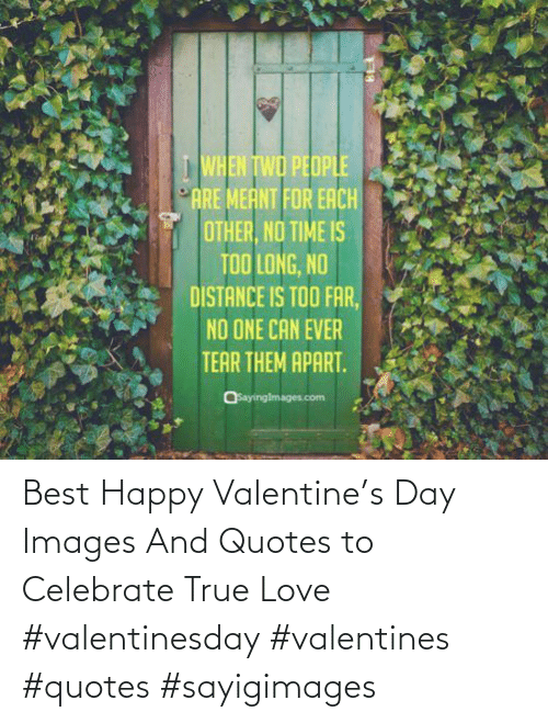 celebrate: Best Happy Valentine's Day Images And Quotes to Celebrate True Love #valentinesday #valentines #quotes #sayigimages