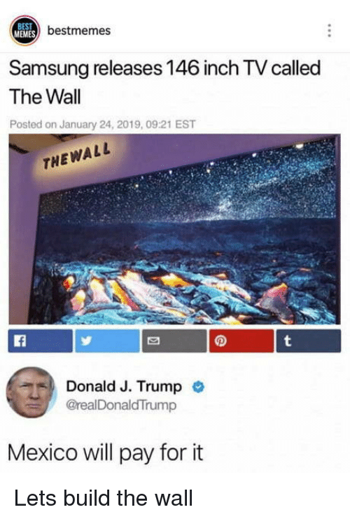 Memes, Best, and Mexico: BEST  MEMES  3) bestmemes  Samsung releases 146 inch TV called  The Wall  Posted on January 24, 2019, 09:21 EST  THEWALL  Lf  Donald J. Trump  @realDonaldTrump  Mexico will pay for it Lets build the wall