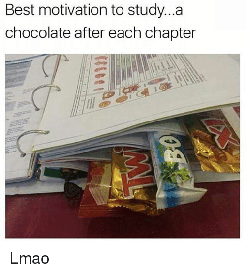 Funny, Lmao, and Best: Best motivation to study...a  chocolate after each chapter Lmao