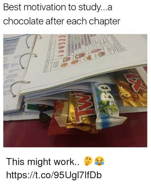 Work, Best, and Chocolate: Best motivation to study...a  chocolate after each chapter This might work.. 🤔😂 https://t.co/95Ugl7lfDb