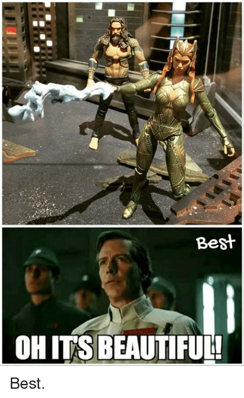 Beautiful, Memes, and Best: Best  OH IT'S BEAUTIFUL! Best.