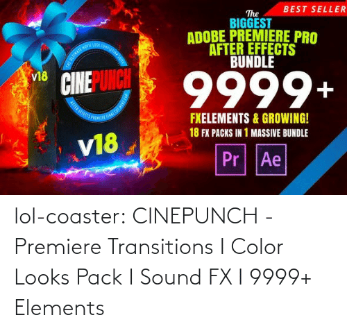 suite: BEST SELLER  The  BIGGEST  ADOBE PREMIERE PRO  AFTER EFFECTS  BUNDLE  OOA COMPLE  9999+  v18  FXELEMENTS & GROWING!  18 FX PACKS IN 1 MASSIVE BUNDLE  v18  Pr Ae lol-coaster:  CINEPUNCH - Premiere Transitions I Color Looks Pack I Sound FX I 9999+ Elements