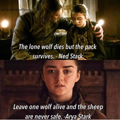 lone wolf: /Best  The lone wolf dies but the pack  survives. - Ned Stark  Leave one wolf alive and the sheep  are never safe. Arya Stark