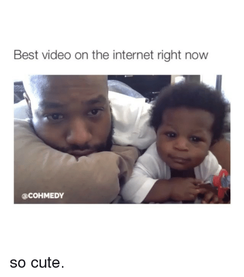 Girl Memes: Best video on the internet right now  Can COHMEDY so cute.