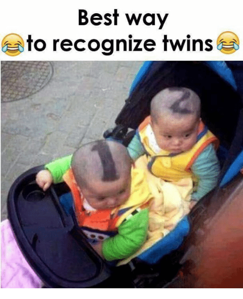 Memes, Twins, and Best: Best way  to recognize twins