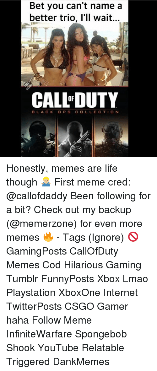 Internet, Life, and Lmao: Bet you can't name a  better trio, l'll wait...  CAL L DUTY  BLACK OPSCO LLE CTION Honestly, memes are life though 🤷🏼‍♂️ First meme cred: @callofdaddy Been following for a bit? Check out my backup (@memerzone) for even more memes 🔥 - Tags (Ignore) 🚫 GamingPosts CallOfDuty Memes Cod Hilarious Gaming Tumblr FunnyPosts Xbox Lmao Playstation XboxOne Internet TwitterPosts CSGO Gamer haha Follow Meme InfiniteWarfare Spongebob Shook YouTube Relatable Triggered DankMemes