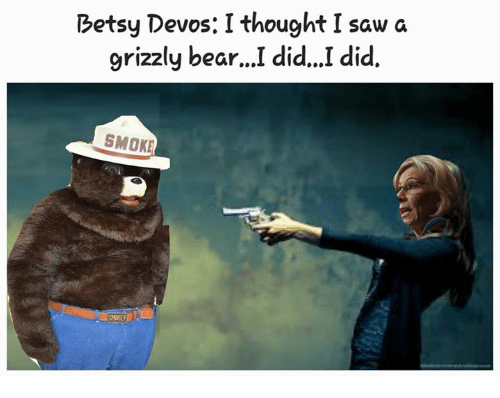 Memes, Bear, and Bears: Betsy Devos: I thought I saw a  grizzly bear  did...I did.  SMOKE