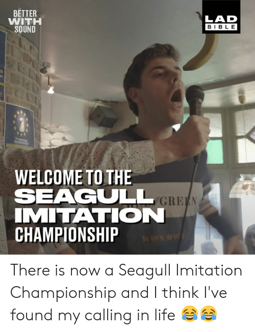 imitation: BETTER  WITH  SOUND  LAD  BIBLE  WELCOME TO THE  SEAGULL  IMITATION  CHAMPIONSHIP There is now a Seagull Imitation Championship and I think I've found my calling in life 😂😂