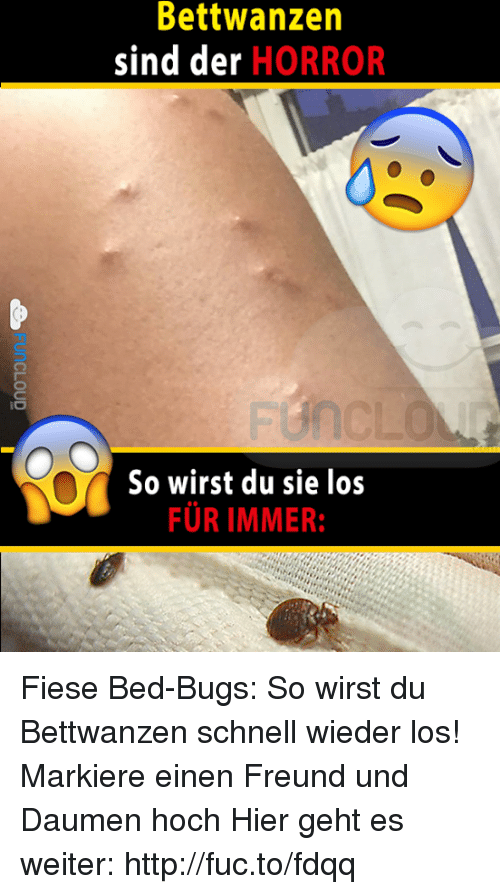 bettwanzen sind der horror so wirst du sie los furimmer 4015573 🔥 25 best memes about bed bug, bug, beds, horror, und, and german