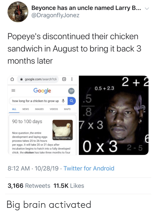 Larry: Beyonce has an uncle named Larry B...  @DragonflyJonez  Popeye's discontinued their chicken  sandwich in August to bring it back 3  months later  2 +2  google.com/search?cli  14  0.5 2.3  Google  ТР  .5  how long for a chicken to grow up  .8  ALL  NEWS  IMAGES  VIDEOS  МAPS  90 to 100 days  7 x 3  Nice question the entire  development and laying eggs  timbercreekfarme...  process takes 25 to 26 hours  Ох3 2-5  per eggs .It will take 20 or 21 days after  incubation begins to hatch into a fully developed  chick. the chicken has take three months to four  8:12 AM 10/28/19 Twitter for Android  3,166 Retweets 11.5K Likes  1P  .. Big brain activated