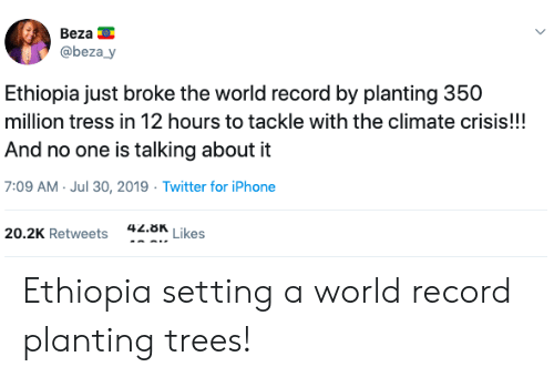 ethiopia: Beza  @beza_y  Ethiopia just broke the world record by planting 350  million tress in 12 hours to tackle with the climate crisis!!!  And no one is talking about it  7:09 AM Jul 30, 2019 Twitter for iPhone  42.8K  Likes  20.2K Retweets Ethiopia setting a world record planting trees!