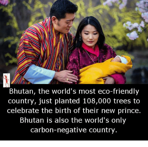 Bhutan: Bhutan, the world's most eco-friendly  country, just planted 108,000 trees to  celebrate the birth of their new prince.  Bhutan is also the world's only  carbon-negative country