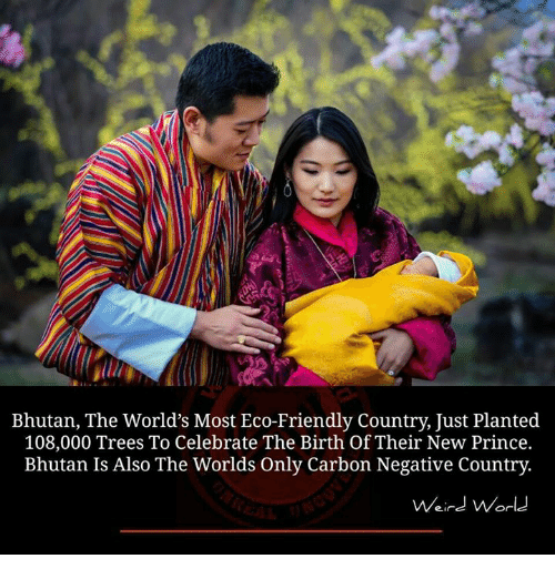 Bhutan: Bhutan, The World's Most Eco-Friendly Country, Just Planted  108,000 Trees To Celebrate The Birth Of Their New Prince.  Bhutan Is Also The Worlds Only Carbon Negative Country.  Weird World