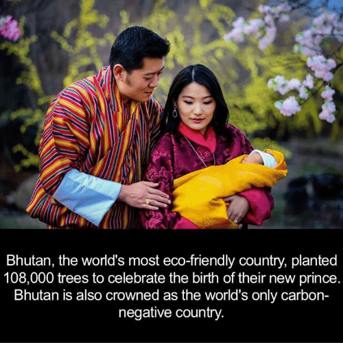 Bhutan: Bhutan, the world's most eco-friendly country, planted  108,000 trees to celebrate the birth of their new prince  Bhutan is also crowned as the world's only carbon-  negative country.