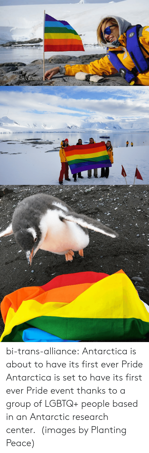 antarctic: bi-trans-alliance:   Antarctica is about to have its first ever Pride     Antarctica is set to have its first ever Pride event thanks to a group of LGBTQ+ people based in an Antarctic research center. (images by Planting Peace)