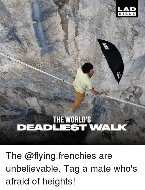 frenchies: BIBLE  THE WORLD'S  DEADLIEST WALK The @flying.frenchies are unbelievable. Tag a mate who's afraid of heights!