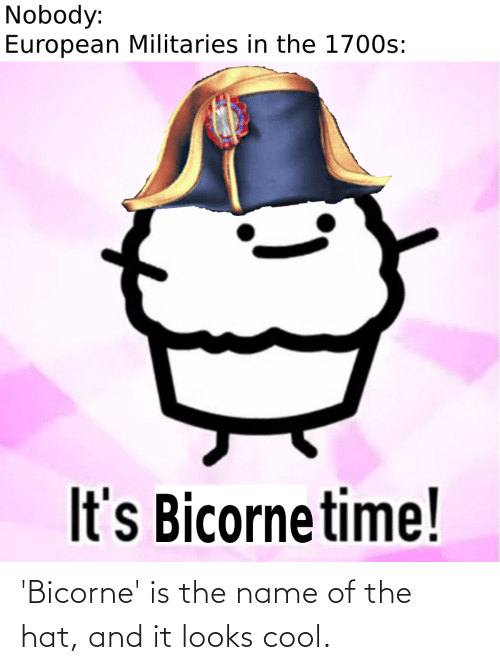 name of: 'Bicorne' is the name of the hat, and it looks cool.