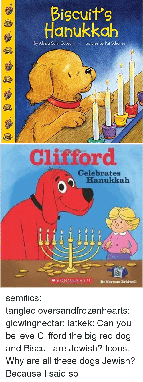 Hanukkah: Bicuits  Hanukkah  by Alyssa Satin Copucilhi  pictures by Pat Schories   Clistord  Celebrates  Hanukkah  SCHOLASTIC  By Norman Brldwell semitics: tangledloversandfrozenhearts:   glowingnectar:  latkek: Can you believe Clifford the big red dog and Biscuit are Jewish? Icons.   Why are all these dogs Jewish?   Because I said so