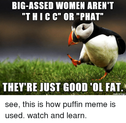 """puffin: BIG-ASSED WOMEN AREN""""T  """"THICC"""" OR """"PHAT  THEY'RE JUST GOOD 'OL FAT  on imgur see, this is how puffin meme is used. watch and learn."""