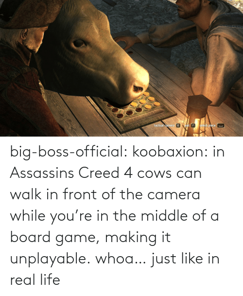 assassins: big-boss-official: koobaxion: in Assassins Creed 4 cows can walk in front of the camera while you're in the middle of a board game, making it unplayable. whoa… just like in real life