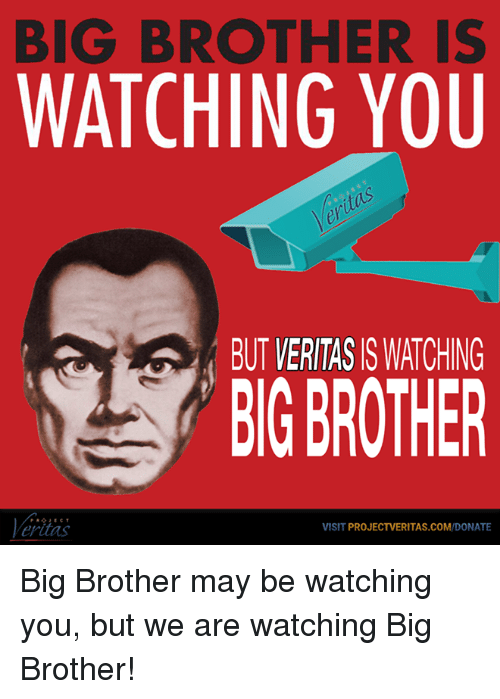 "big brother is watching you essay In the dystopian society, every citizen is under constant surveillance with the  government's slogan: ""big brother is watching you,"" a reminder of."