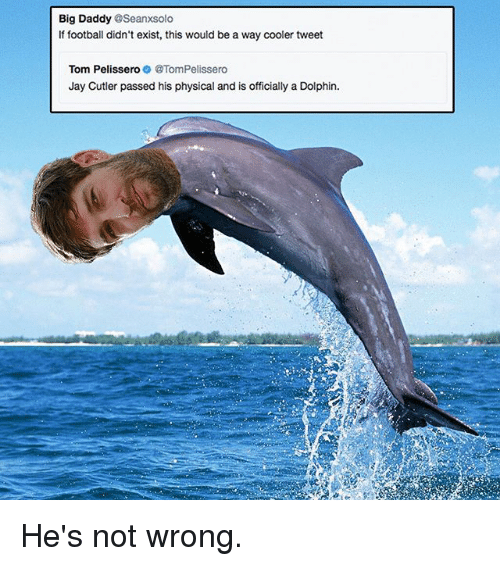 Dolphinately: Big Daddy @Seanxsolo  If football didn't exist, this would be a way cooler tweet  Tom PelisseroTomPelissero  Jay Cutler passed his physical and is officially a Dolphin. He's not wrong.