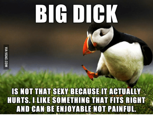 Big Dick, Sexy, and Big Dicks: BIG DICK  IS NOT THAT SEXY BECAUSE IT ACTUALLY  HURTS. I LIKE SOMETHING THAT FITS RIGHT  AND CAN BEENJOYABLE NOT PAINFUL.