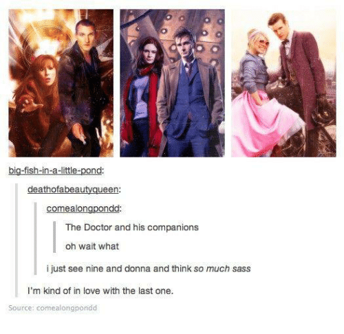 Big Fish: big-fish-in-a-littie-pond  deathofabeautyqueen  comealongpondd  The Doctor and his companions  oh wait what  i just see nine and donna and think so much sass  I'm kind of in love with the last one.  Source: comealongpondd
