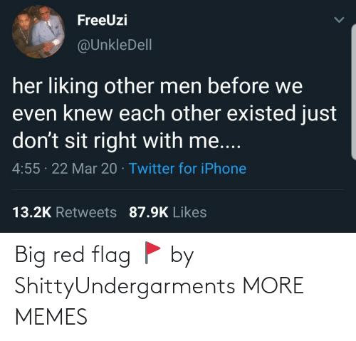 red flag: Big red flag 🚩 by ShittyUndergarments MORE MEMES