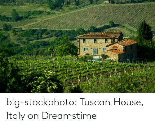 stock images: big-stockphoto:  Tuscan House, Italy on Dreamstime