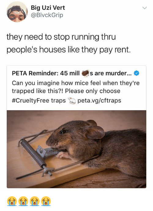 Peta, Girl Memes, and Running: Big Uzi Vert  @BlvckGrip  they need to stop running thru  people's houses like they pay rent.  PETA Reminder: 45 mill s are murder...  Can you imagine how mice feel when they're  trapped like this?! Please only choose  #CrueltyFree traps 'S peta.vg/cftraps 😭😭😭😭
