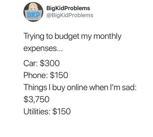 Im Sad: BigKidProblems  BKP @BigKidProblems  Trying to budget my monthly  expenses...  Car: $300  Phone: $150  Things I buy on line when I'm sad:  $3,750  Utilities: $150