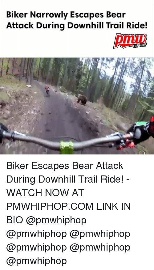 Memes, Bear, and Link: Biker Narrowly Escapes Bear  Attack During Downhill Trail Ride!  HIPHOP Biker Escapes Bear Attack During Downhill Trail Ride! - WATCH NOW AT PMWHIPHOP.COM LINK IN BIO @pmwhiphop @pmwhiphop @pmwhiphop @pmwhiphop @pmwhiphop @pmwhiphop