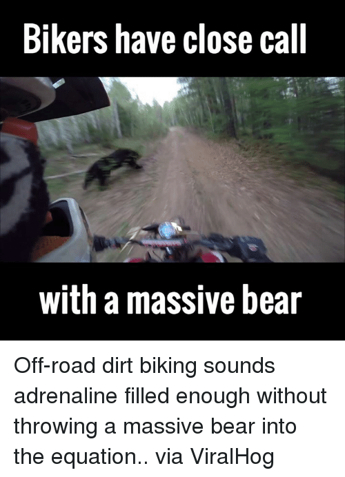 off road: Bikers have close call  with a massive bear Off-road dirt biking sounds adrenaline filled enough without throwing a massive bear into the equation.. via ViralHog