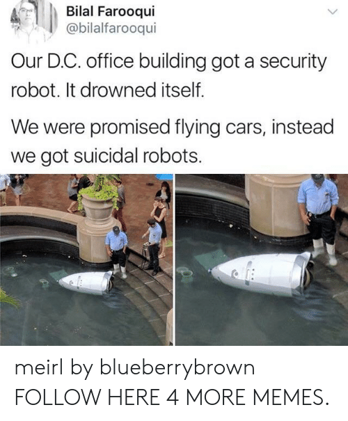 Drowned: Bilal Farooqui  @bilalfarooqui  Our D.C. office building got a security  robot. It drowned itself.  We were promised flying cars, instead  we got suicidal robots. meirl by blueberrybrown FOLLOW HERE 4 MORE MEMES.