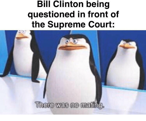 Bill Clinton: Bill Clinton being  questioned in front of  the Supreme Court:  There was no mating