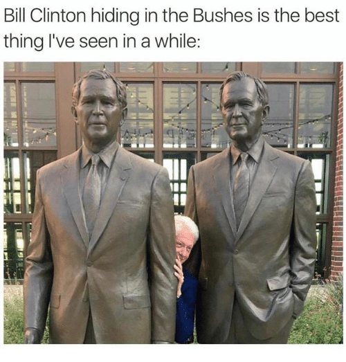 Bill Clinton, Best, and Clinton: Bill Clinton hiding in the Bushes is the best  thing I've seen in a while:  4
