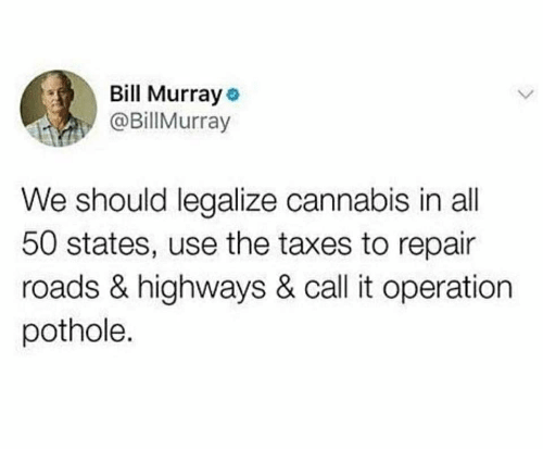 50 states: Bill Murray  @BillMurray  We should legalize cannabis in all  50 states, use the taxes to repair  roads & highways & call it operation  pothole.