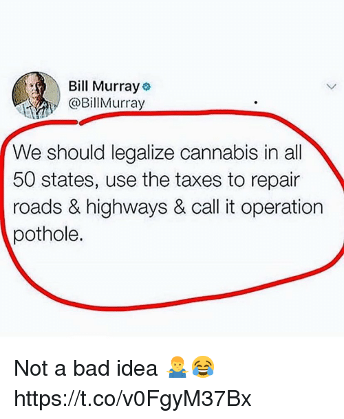 All 50 States: Bill Murray  @BillMurray  We should legalize cannabis in all  50 states, use the taxes to repair  roads & highways & call it operation  pothole. Not a bad idea 🤷‍♂️😂 https://t.co/v0FgyM37Bx