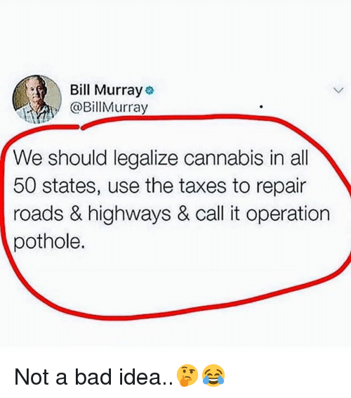 50 states: Bill Murray  @BillMurray  We should legalize cannabis in all  50 states, use the taxes to repair  roads & highways & call it operation  pothole. Not a bad idea..🤔😂